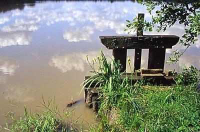 Les étangs de Sologne (circuit