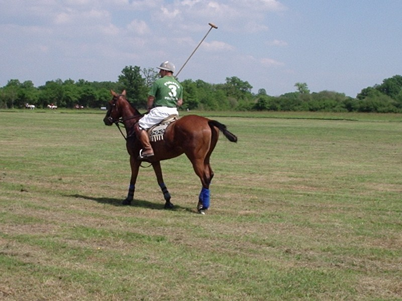 Polo club de Plaisance
