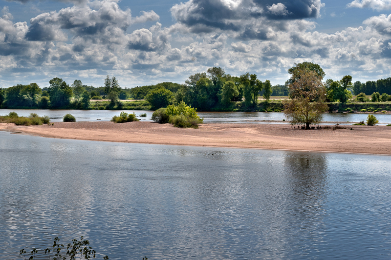 """Balade nature """"contes et oiseaux"""" avec la Maison de La Loire"""
